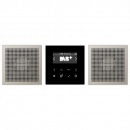 Jung DABES2 DAB+ Stereo-Set Smart Radio
